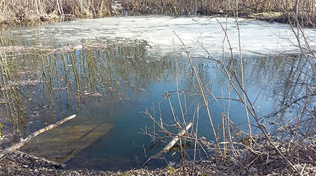 В Витебской области 8-летний мальчик провалился под лед и погиб