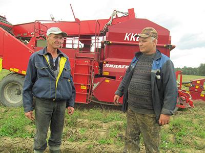 Картофелеводам из КФХ «Родник» дождь мешает убирать урожай