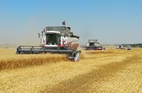О предупреждении производственного травматизма  при проведении работ по уборке зерновых культур в 2018 году