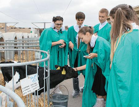 Агроклассы открыты в Шумилинской районной гимназии и Кордонской школе