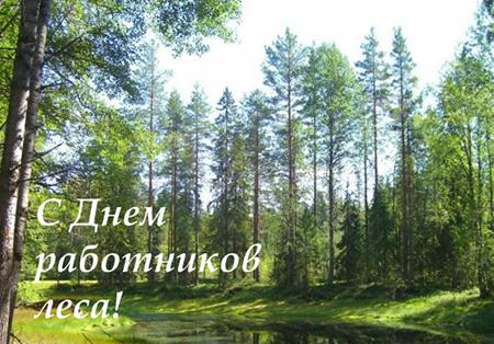 16 верасня – Дзень работнікаў лесу