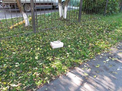 Серийный грабитель пенсионерок задержан в Витебске