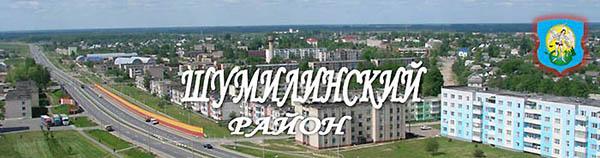 На сессии районного Совета депутатов утверждены показатели социально-экономического развития и бюджет Шумилинского района на 2019 год