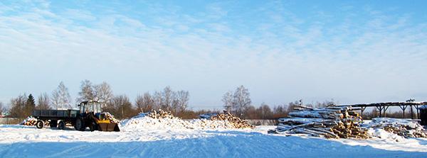 Студзень марозіць – гаспадар дровы возіць