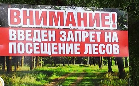 Внимание! В Витебской области введен запрет на посещение лесов