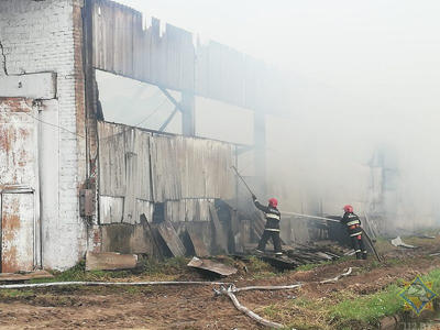 50 тон сена уничтожено, 150 – повреждено огнем, в результате пожара на одном из сельскохозяйственных объектов Шумилинского района