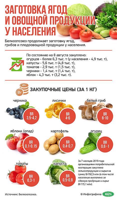 Заготовка ягод и овощной продукции у населения